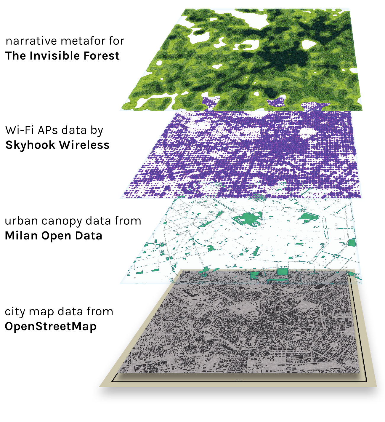 The Invisible Forest data layers