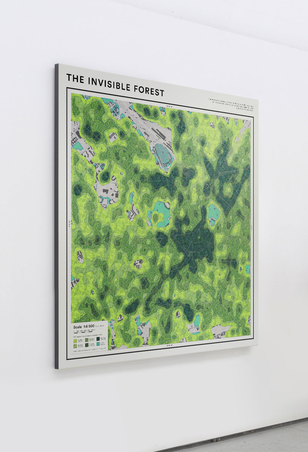 The Invisible Forest exhibition